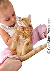 bambino, giochi, bambino primi passi, gatto