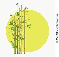 bamboe, vector, boompje