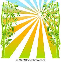 bamboe, vector.
