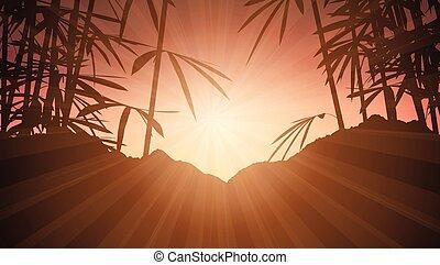 bamboo against sunset sky 1906