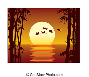Bamboo and sundown - Vector illustration of bamboo forest,...