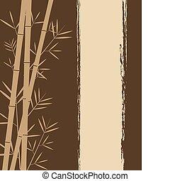 Bamboo backgorund