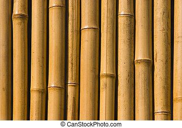 Bamboo background - close-up detail of bamboo tree fence