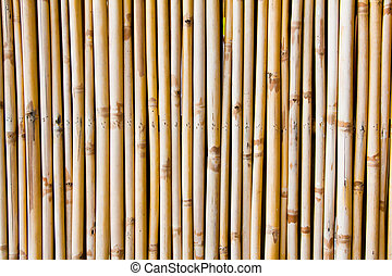 Bamboo background in vertical line
