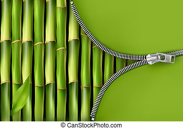 Bamboo background with open zipper  Vector illustration