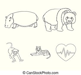 Bamboo bear, hippopotamus, wild animal tiger, monkey . Wild animal set collection icons in outline style vector symbol stock illustration web.