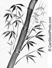 Bamboo black and white study