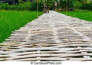 Bamboo bridge for walk in Rice field