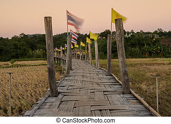 Bamboo bridge pass rice field