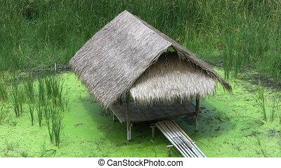 Bamboo Grass Hut Over A Swamp - A lovely grass hut made of...