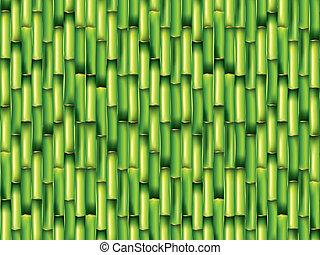 Bamboo green background vector illustration