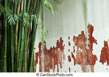 bamboo grove and wall
