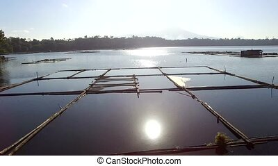 Bamboo hut structure for local aquaculture provide domestic food needs of small rural farming community in Sampaloc Lake, Laguna. drone, aerial shot