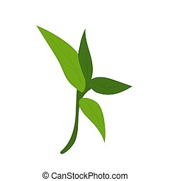 bamboo leaves. Hand drawn vector illustration isolated on white background.
