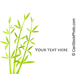 Bamboo plants background. Vector frame