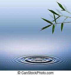 bamboo., résumé, ambiant, arrière-plans