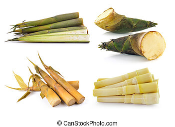 Bamboo shoot on white background