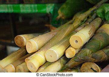 Bamboo shoots at Lamdin Market, Chaweng, Koh Samui, Thailand