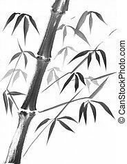 Bamboo stalk watercolor study