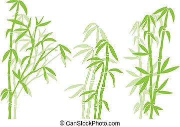 bamboo tree - Bamboo tree silhouettes, vector