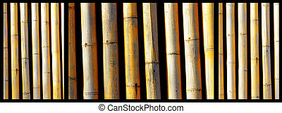 bamboo trunks collage