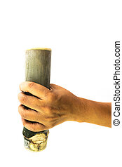 Bamboo tube in the hand of man isolated