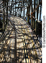 Bamboo Walkway - bamboo pathway which looks tangled but is...