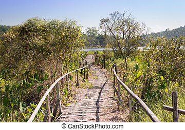 Bamboo walkway for nature trails in the lake