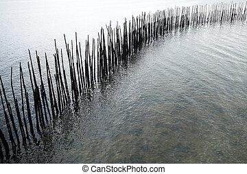 Bamboo wall in the sea