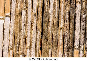 Bamboo Wall , Texture