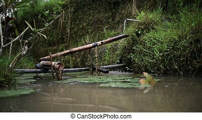 Bamboo water tube - Amazing bamboo water tube in an asian...