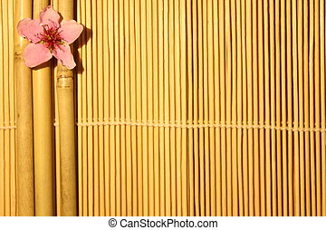 bamboo with a flower on the wooden background