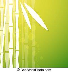 bambou, arrière-plan vert