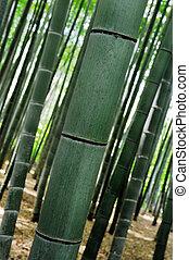 bambou herbe feuille beaut dor reflet sur jaune eau fond ondul bambou herbe. Black Bedroom Furniture Sets. Home Design Ideas