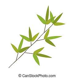 bambou, vecteur, coloré, leaves., illustration.