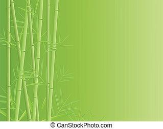 bambou, vecteur, fond
