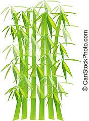 bambou, vert, usines