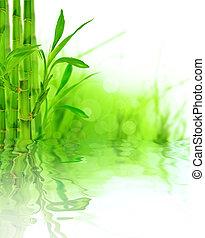 bambu, borda, bonito
