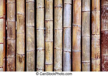 bambu, textura
