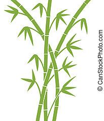 bambu, verde, hastes