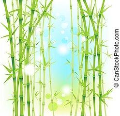 bambus, čerstvý, grafické pozadí