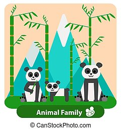 bambus, berge., hintergrund, familie, panda