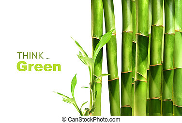 bambus ostrzeliwuje, sztaplowany, pokotem