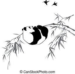 bambus, panda, zweig