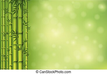 bambus, tapeta, zielony