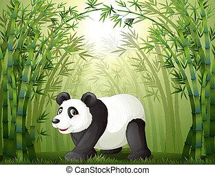 bambus, zentrieren, bäume, panda