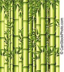 bambus, zielone tło