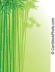 bambusowy las, tło