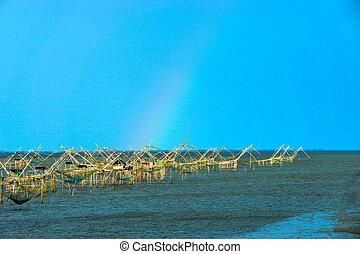 bambusz, gépezet, (square, bemárt, net)