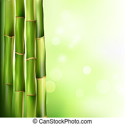 bambusz, háttér., vektor, illustration.